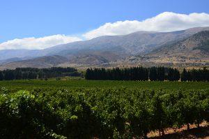 lebanon wine chateau kefraya